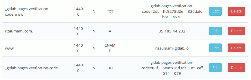 Jendela contoh pengaturan DNS di Rumah Web, sebuah layanan penyedia domain